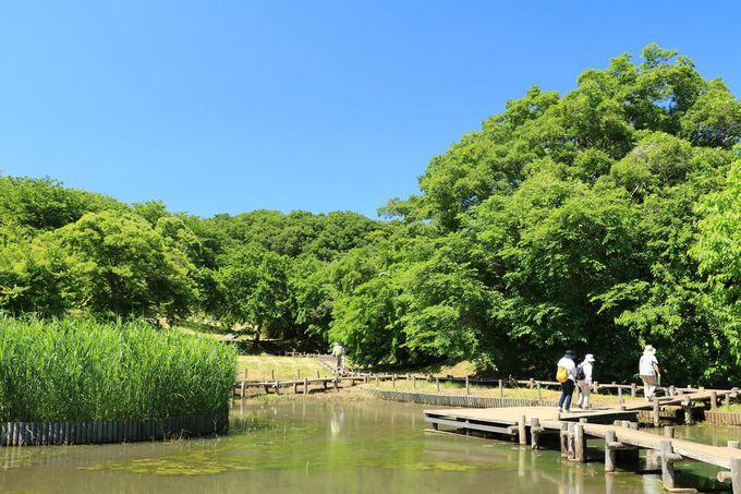 丘と谷戸とが織り成す風景が美しい「大久保分園」