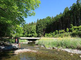 渓谷も樹林も美しい!埼玉県の景勝地「嵐山渓谷」を楽しもう