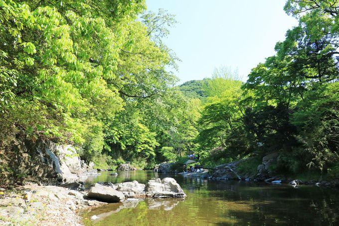 武蔵国を代表する景勝地のひとつ、「嵐山渓谷」