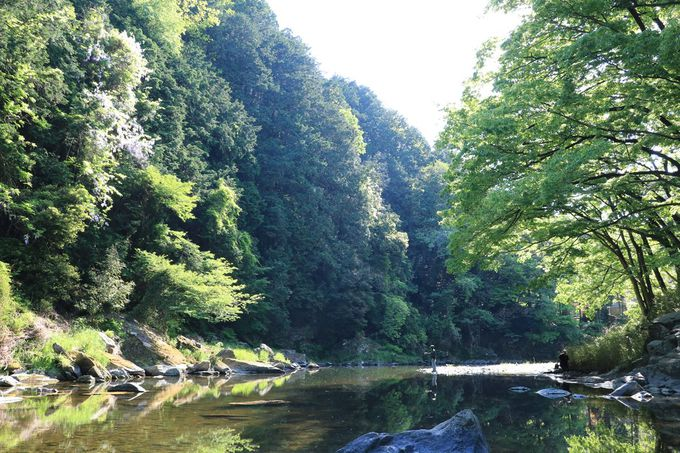 蛇行する槻川がつくる、「嵐山渓谷」の渓谷美