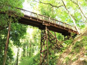 森林浴気分で中世の山城跡を歩こう!東京八王子「滝山城跡」