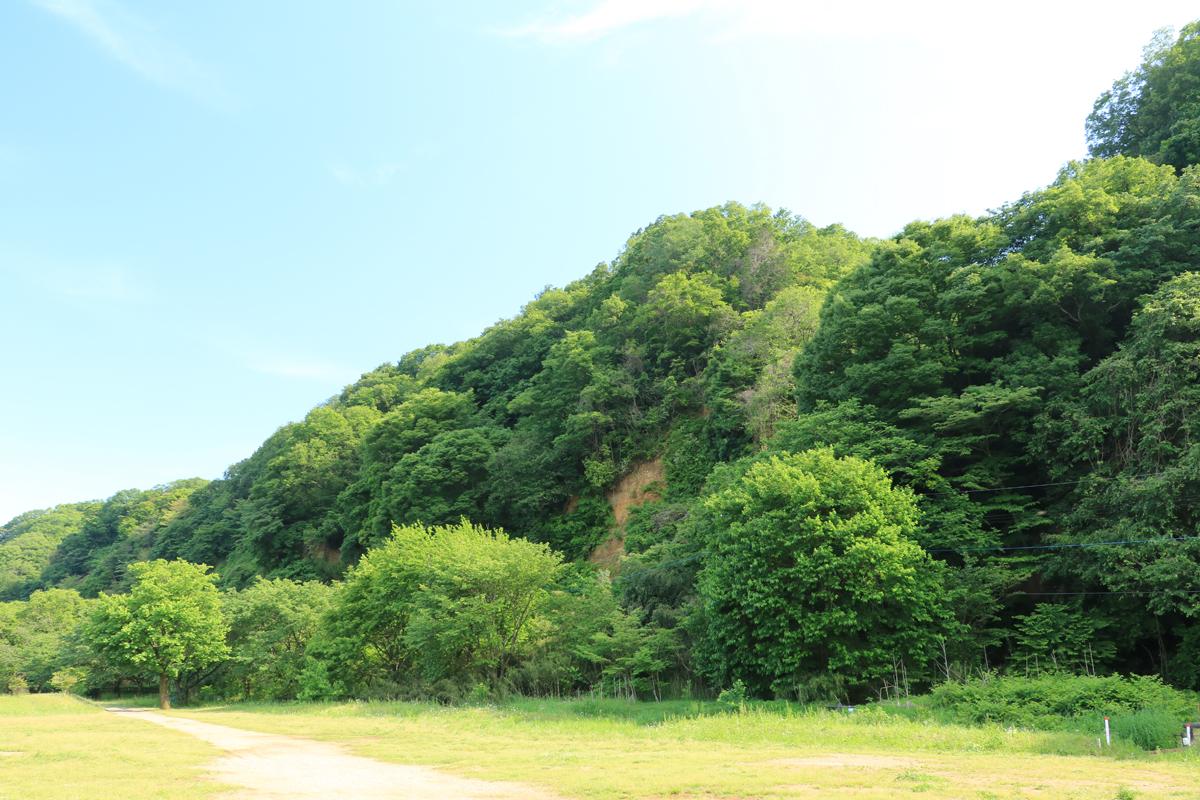 高月町の田園風景へ散策の足を延ばすのも楽しい