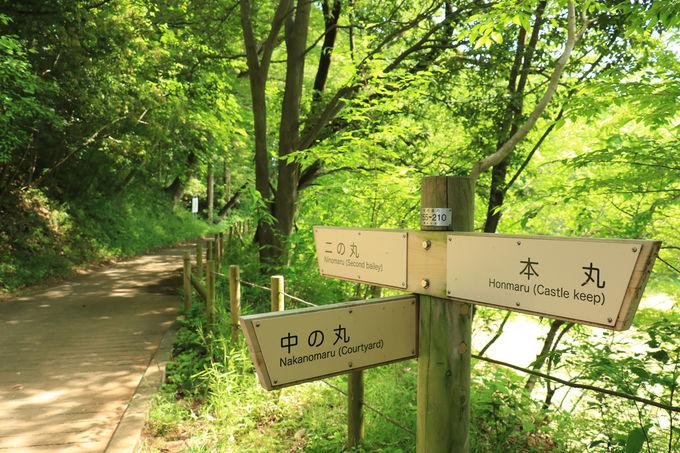 マニアでなくても必見!国指定史跡、続日本100名城の滝山城
