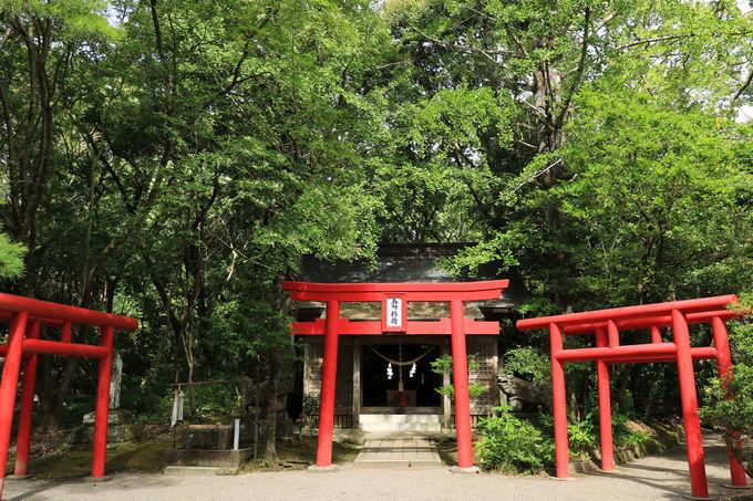 五所稲荷神社から神池周辺へも足を延ばそう