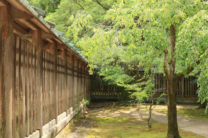 宮崎神宮の建築物は国の登録有形文化財