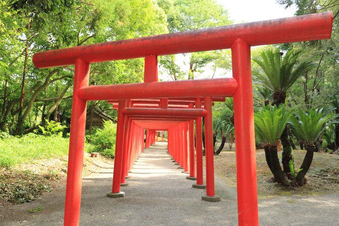 宮崎県の各自治体でも独自の観光支援策を実施(1)