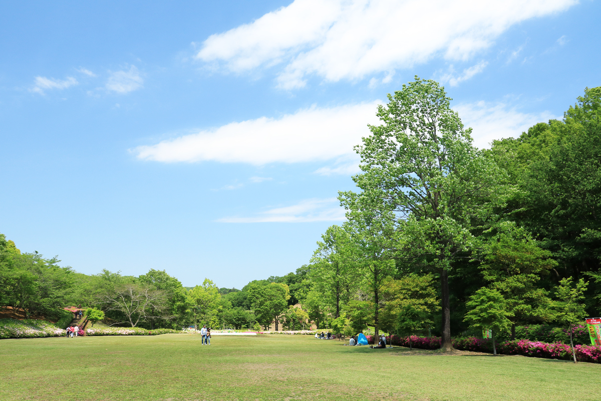 のんびり過ごせる「芝の広場」も魅力