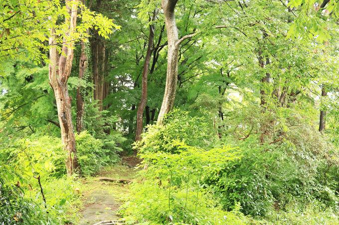 盛岡出身の政治家、阿部浩が造った建物と庭園