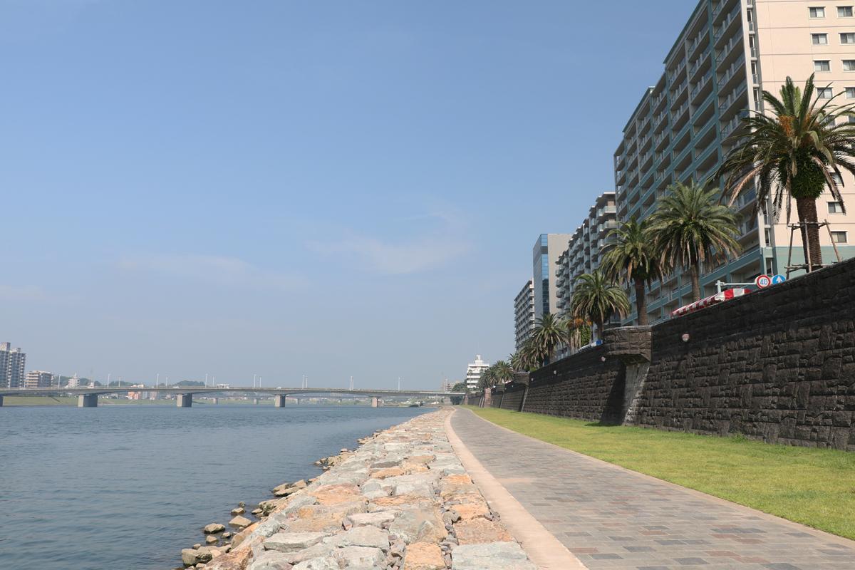 大淀川河川敷の遊歩道も歩いてみよう