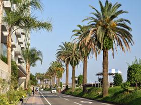 Go To トラベルキャンペーンで宮崎へ!観光支援策・旅行情報まとめ
