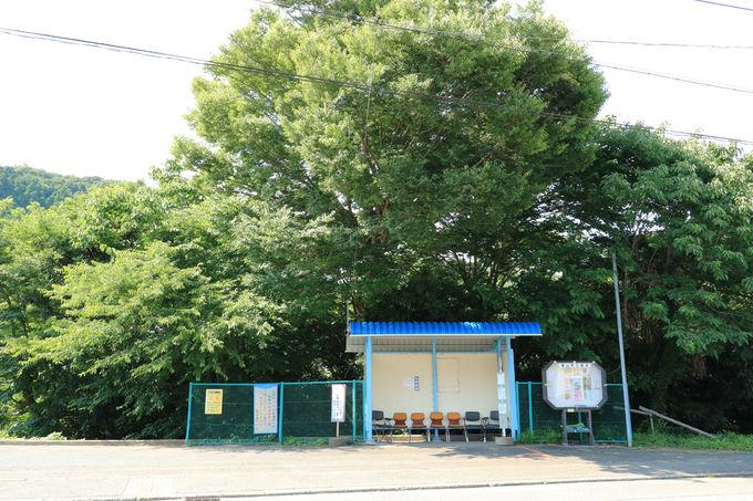 葉山の棚田はバスでのアクセスがお勧め