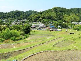 葉山で里山散歩!「にほんの里100選」の棚田を訪ねよう