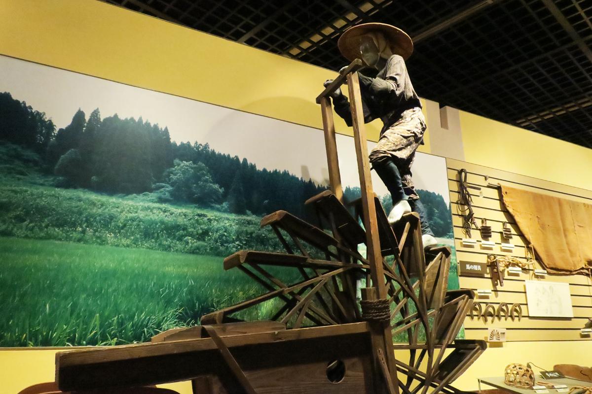 宮崎観光として訪ねてみたい、宮崎県総合博物館