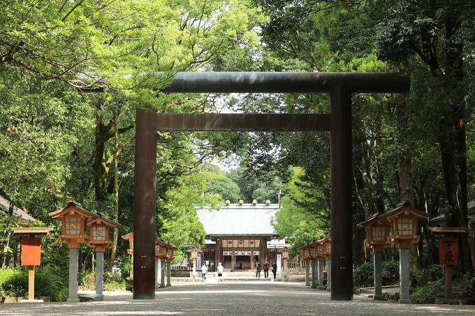 他にも見所がたくさんの宮崎県総合博物館を訪ねよう