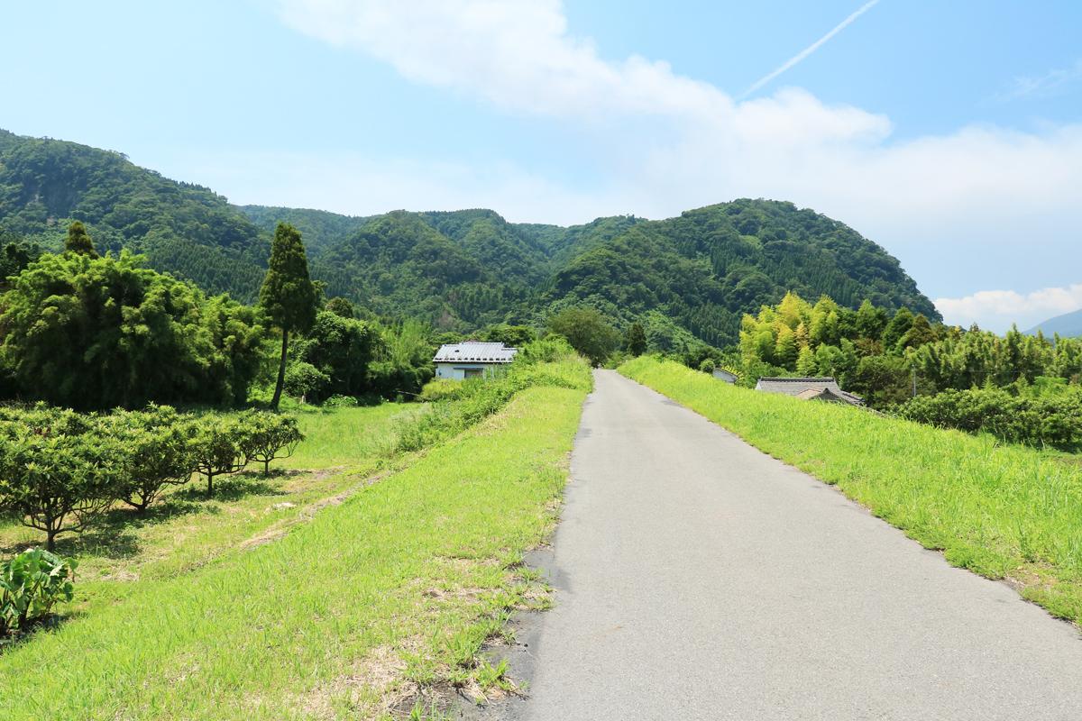長閑な田園風景や大隅線の跡など、周辺の散策も楽しもう