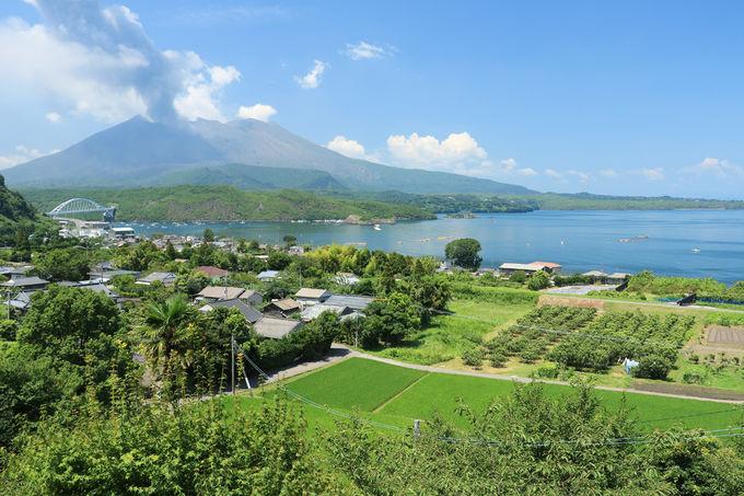 桜島が目の前!展望所からの眺望が絶景