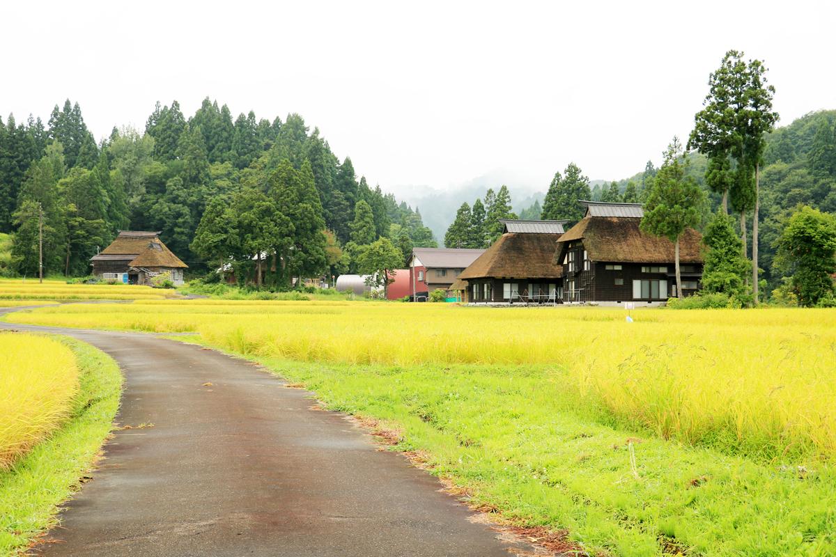 縄文期から人々の暮らしがあった土地