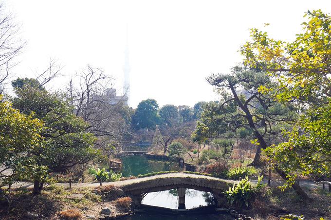 向島百花園は江戸町人の美意識を感じさせる庭園