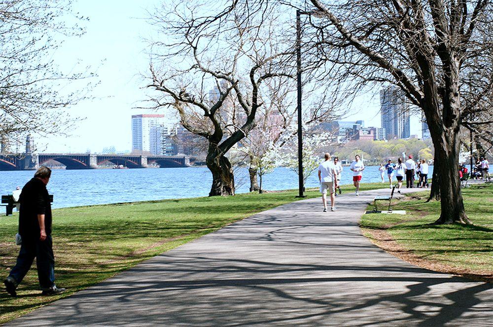 チャールズ川周辺 (Charles River)