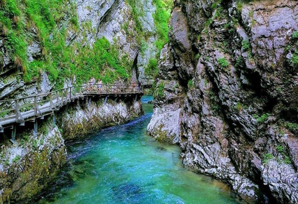 ヴィントガル渓谷で自然を満喫するハイキング