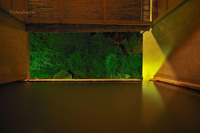 日本有数の炭酸泉にて体の内から外まで療養を!