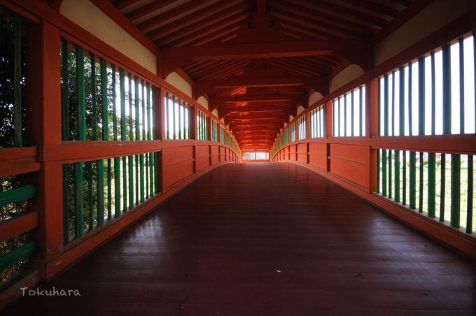 10年に1度のみ扉が開かれる神の橋「呉橋」