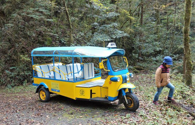 時期によっては「津野トゥクで行く不入渓谷ツアー」に参加できる