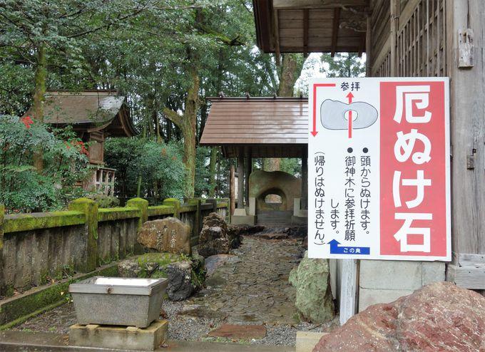 勝負運アップのご利益大!漁師の守り神「久礼八幡宮神社」