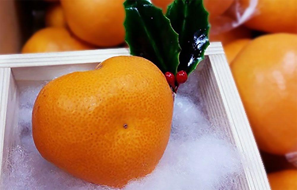 """カナダの慣習「クリスマスオレンジ」とハート型のみかん""""ai(アイ)"""""""