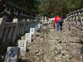 クライミング参拝でつかめ良縁!小豆島の秘寺「奥之院 笠ヶ瀧」