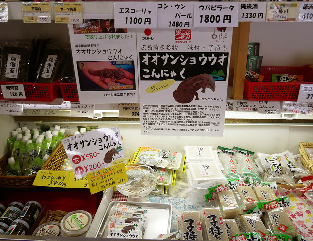 SNSで大人気!広島の新名物「オオサンショウウオこんにゃく」