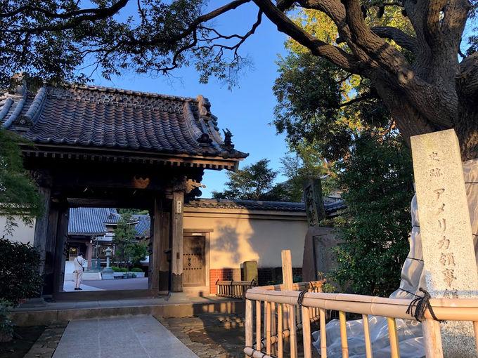 かつてのアメリカ領事館「曹洞宗青木山本覺寺」