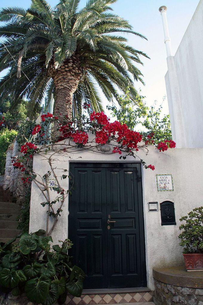 海と花とかもめを道づれに歩く、イタリアで一番美しい小道