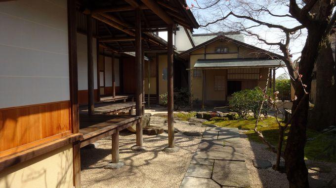 美術館内にある「茶の庭」で庭園散策