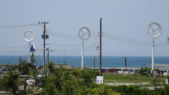 新潟市内の自然環境を再現!「にいがたフィールド」