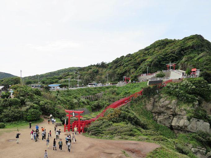 神秘的な美しさ!赤い鳥居のトンネル