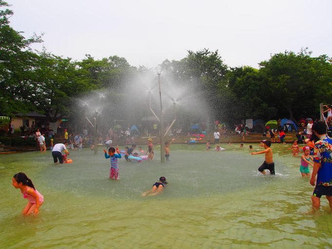 子供がはしゃいで喜ぶ!にじの池で水遊び