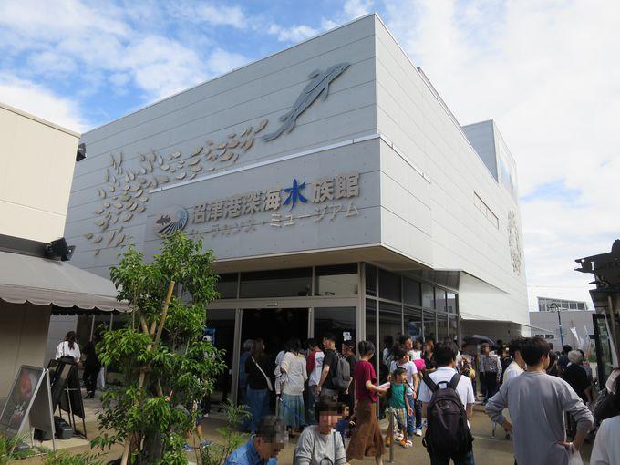 沼津港深海水族館へ行こう!