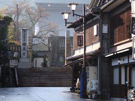 300人の彫刻師が集まる井波彫刻の町・富山県南砺市井波を散策