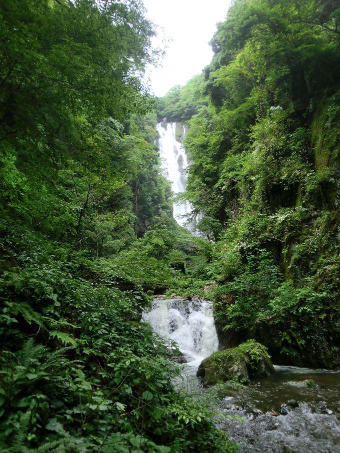 滝から降りてくる風と水しぶきは最高のミスト