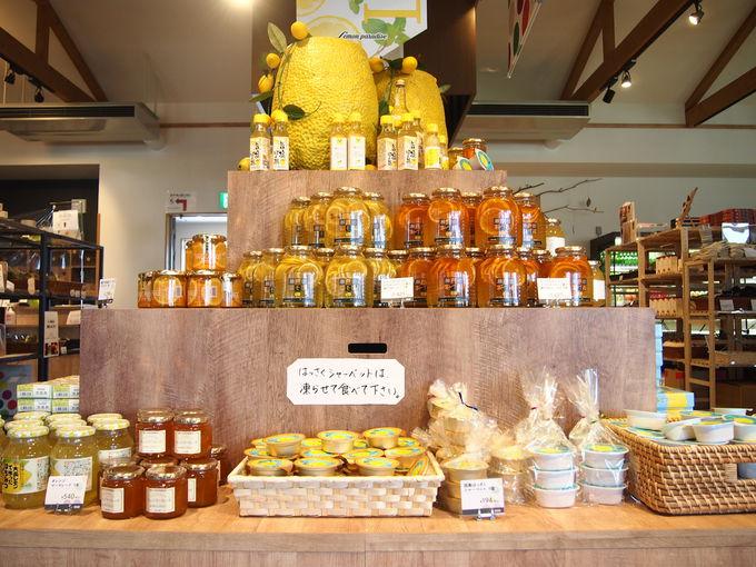 フォトジェニックな店内には広島の魅力がてんこ盛り!