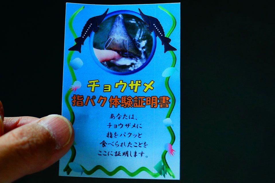 最も激しい甘噛み体験!?チョウザメ指パク