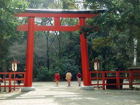 京都の世界遺産を巡ろう!1泊2日モデルコース
