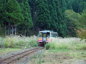 ススキ野原に埋もれる列車!岡山県北を走る因美線で郷愁溢れる鉄道旅へ