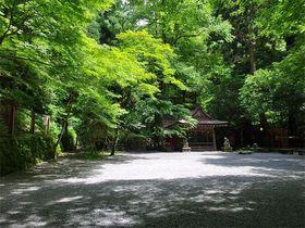 濃密な神気に満ちた異世界!京都・貴船神社で何を見る何を感じる?!