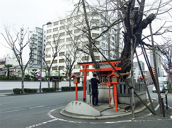 梅田エリアの霊験あらたかな銀杏の木「龍王大神」