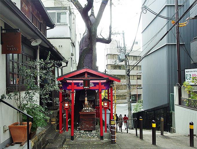 伐採すると災いが!大阪市街のミステリアス御神木スポットを巡る