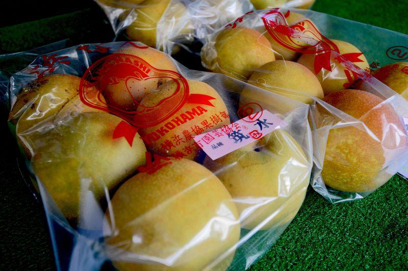 """横浜ブランド""""浜なし""""は農林水産省も認める「長谷川果樹園」で欲張り買い!"""