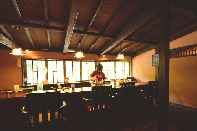 木漏れ日が癒すカフェスペース
