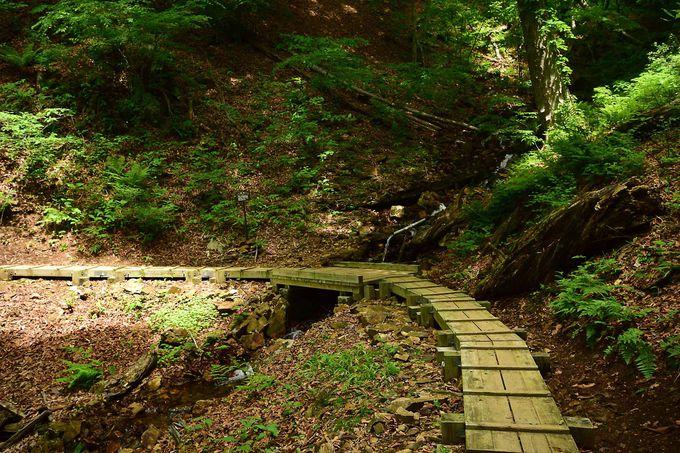 摩耶姫伝説の地「摩耶の滝」で女子力アップ